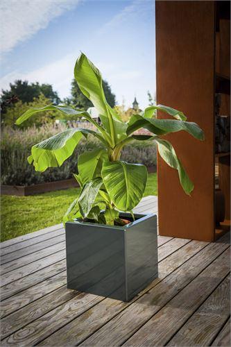 Pflanzgefäß mit zeitlos schönen Design.