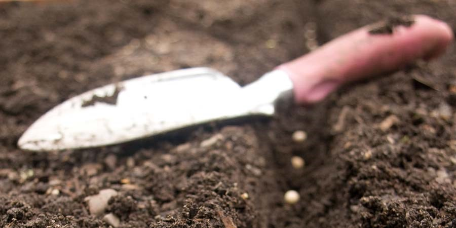 Gartenerde für Ihr Hochbeet aus Cortenstahl